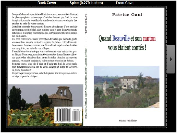 Patrice Gaul Beauville